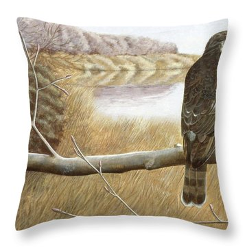 Marsh Hawk Throw Pillow by Laurie Stewart