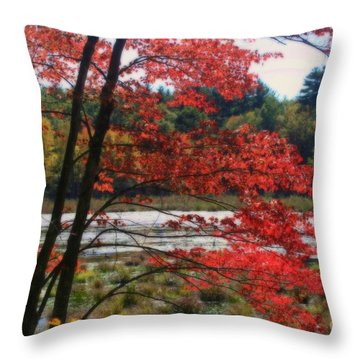 Marsh In Autumn Throw Pillow