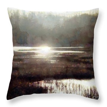 Throw Pillow featuring the photograph Marsh Moods - At The End Of The Day - Horizontal by Janine Riley