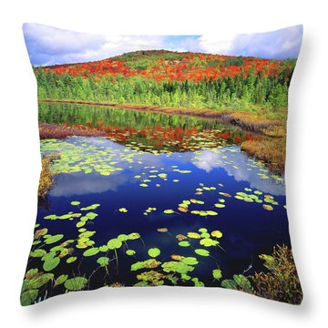 Marsh Pond Throw Pillow