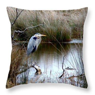 Marsh Pond Great Blue Heron Throw Pillow by Phyllis Beiser