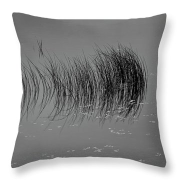 Throw Pillow featuring the photograph Marsh Reflection by Albert Seger