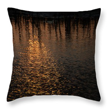 Marsh Sunrise Throw Pillow
