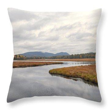 Marshall Brook No. 2 - Acadia - Maine Throw Pillow