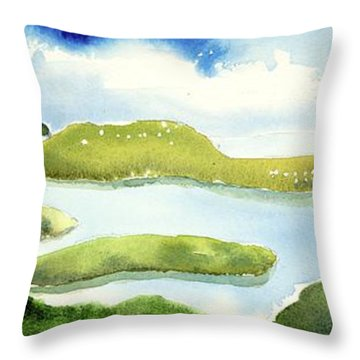 Marshes Throw Pillow