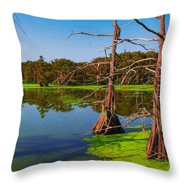 Marshes Of Wallisville Throw Pillow