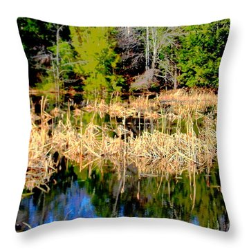 Marshland Throw Pillow by Jesse Ciazza