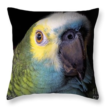 Marty The Blue Front Amazon Throw Pillow by Melissa Messick