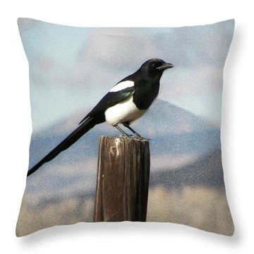 Marty The Magpie Throw Pillow by Daniel Hebard