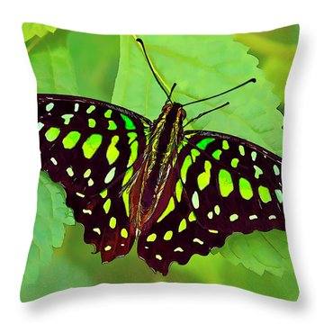 Marvelous Malachite Butterfly 2 Throw Pillow