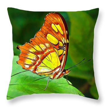 Marvelous Malachite Butterfly Throw Pillow