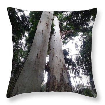 Mary Cairncross Rainforest  Throw Pillow