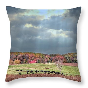 Maryland Farm With Autumn Colors And Approaching Storm Throw Pillow
