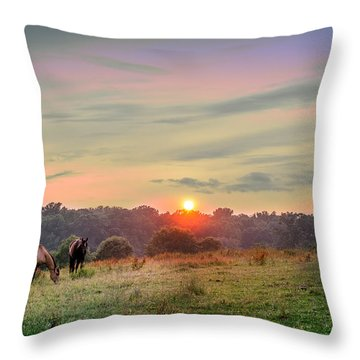 Maryland Pastures Throw Pillow