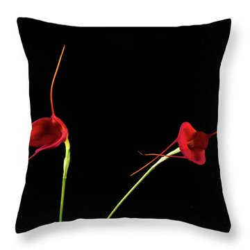 Masd Cheryl Shohan Throw Pillow by Catherine Lau