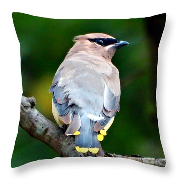 Mask And Feathers Throw Pillow