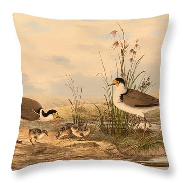 Masked Lapwing Throw Pillow by Mountain Dreams