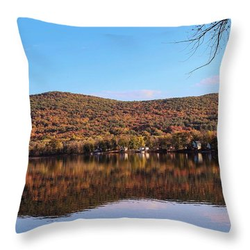 Mass Audubon Arcadia Wildlife Sanctuary Easthampton Throw Pillow