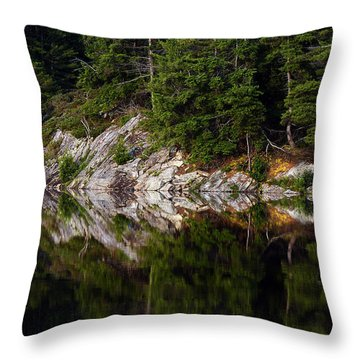 Massasauga Park Reflection Throw Pillow