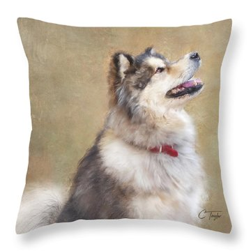 Throw Pillow featuring the painting Master Of The Domain II by Colleen Taylor