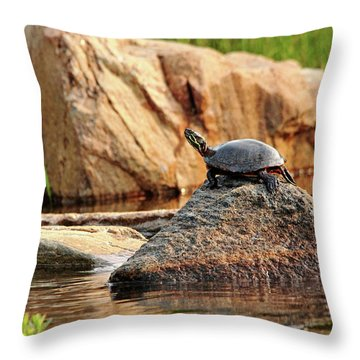 Master Of This Rock Throw Pillow