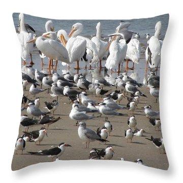 Matagorda Beach Sea Birds Throw Pillow