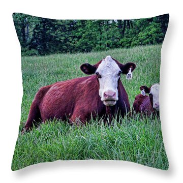 Throw Pillow featuring the photograph Matched Set by Cricket Hackmann
