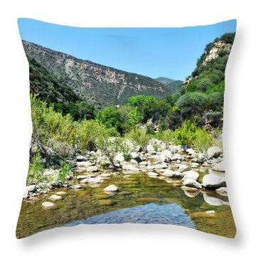 Throw Pillow featuring the photograph Matilija Hot Springs by Kyle Hanson