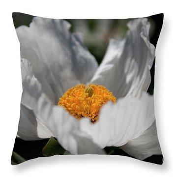 Matilija Poppy Throw Pillow