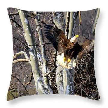 Mating Pair At Nest Throw Pillow by Randall Branham
