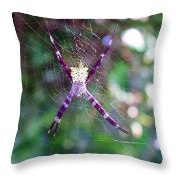 Maui Orbweaver/garden Spider Throw Pillow
