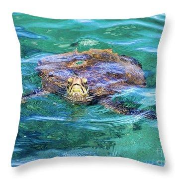 Maui Sea Turtle Throw Pillow