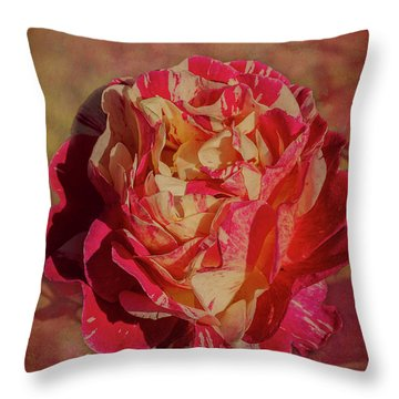 Throw Pillow featuring the photograph Maurice Ultillo by Elaine Teague