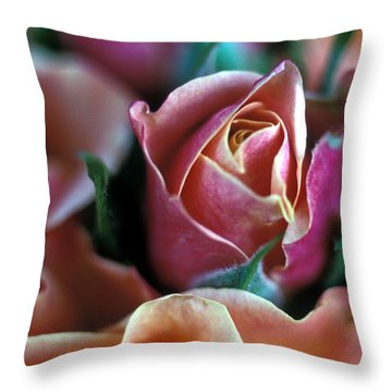 Mauve And Peach Roses Throw Pillow by Kathy Yates