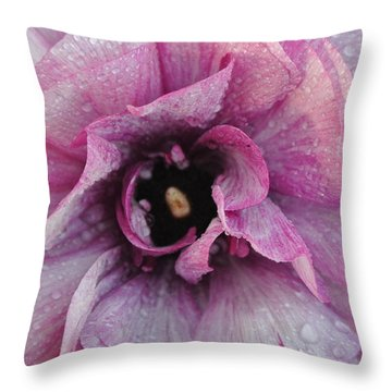 Throw Pillow featuring the photograph Mauve Beauty by Tamara Bettencourt