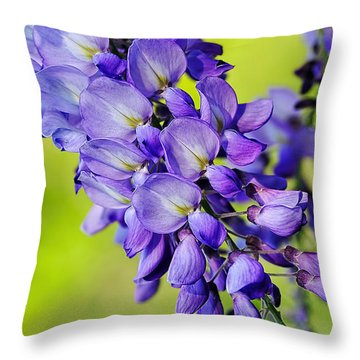 Mauve Wisteria Throw Pillow by Kaye Menner