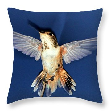 Max, Flashed Throw Pillow