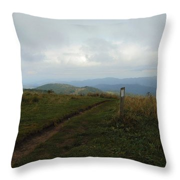 Max Patch Throw Pillow