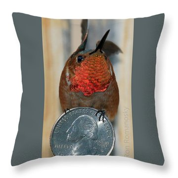 Maxwell And His Quarter Throw Pillow