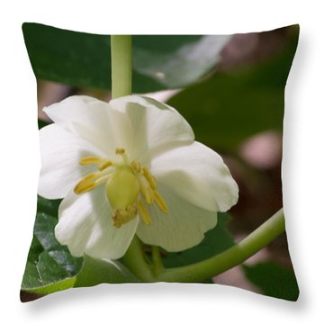 May-apple Blossom Throw Pillow