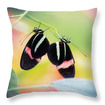 May I Have This Dance? Throw Pillow