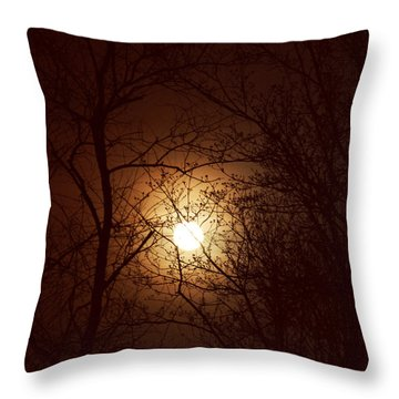 May Moon Throw Pillow