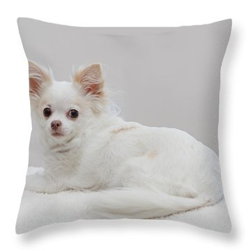 Maya 2 Throw Pillow