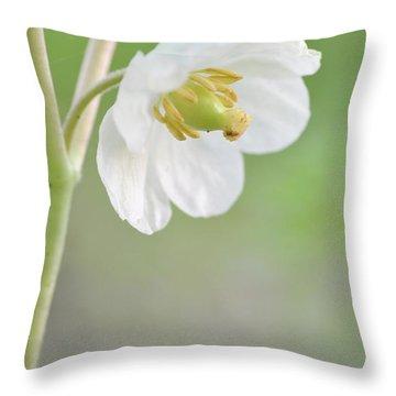 Mayapple Flower Throw Pillow