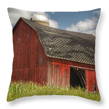 0023 - Mayville Red I Throw Pillow