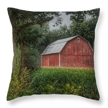 0027 - Mayville's Lapeer Road Red Throw Pillow