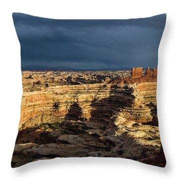 Maze Panorama Throw Pillow