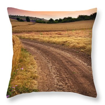 Mazzy Road Throw Pillow