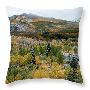 Mcclure Pass - 9606 Throw Pillow