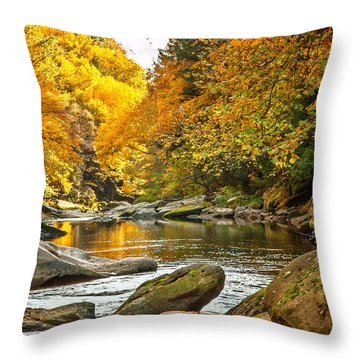 Mcconnell's Mill State Park Throw Pillow by Skip Tribby